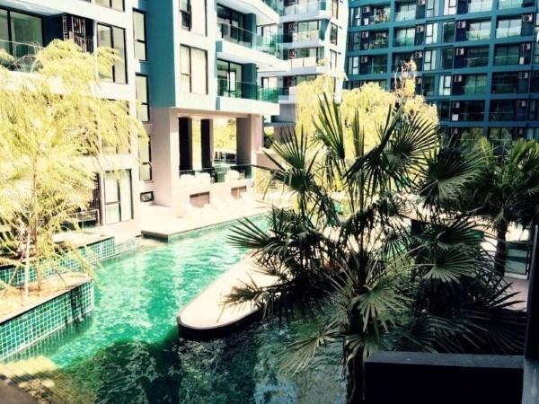 pic-11-Siam Properties Co.Ltd. Acqua Condominium Pattaya  to rent in Jomtien Pattaya